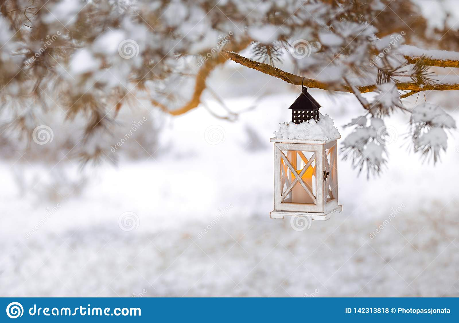 Lantern with candle on a snowy tree