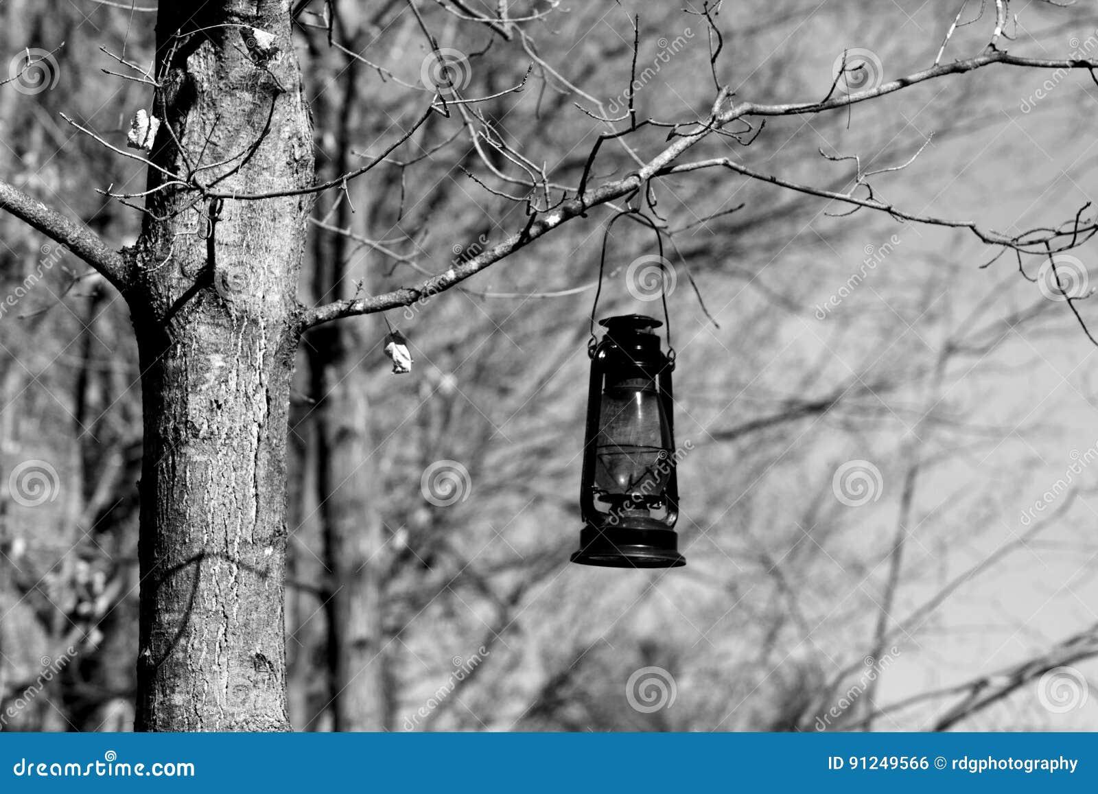 Lanterne d arbre