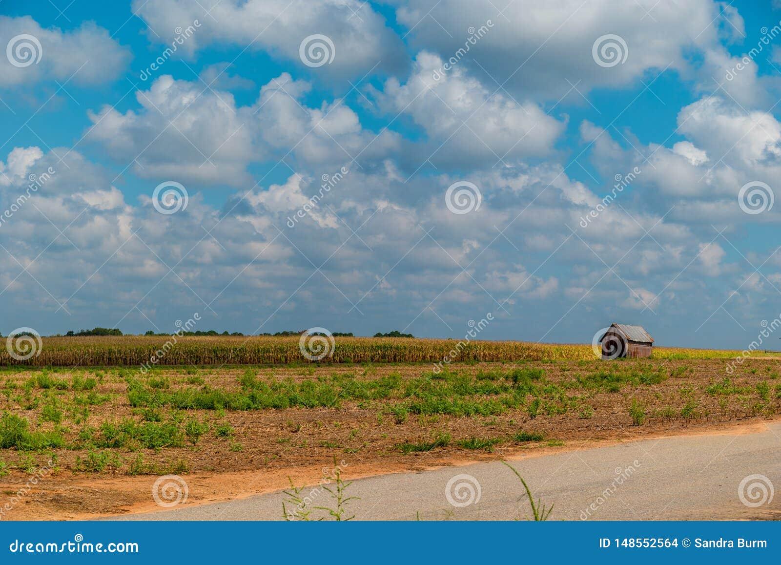 Lantlig jordbruksmark med lantgårdstrukturen