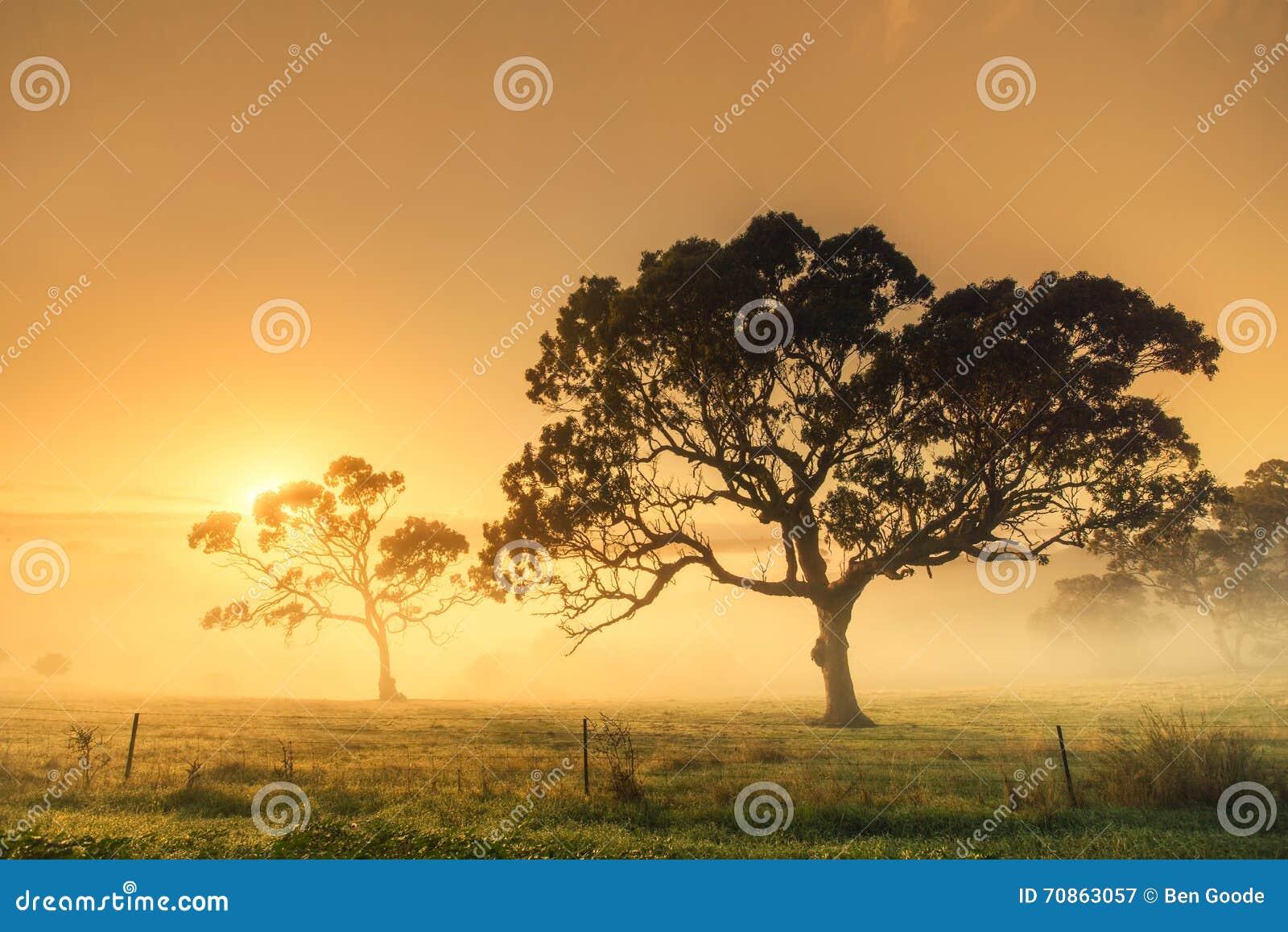 Lantlig soluppgång