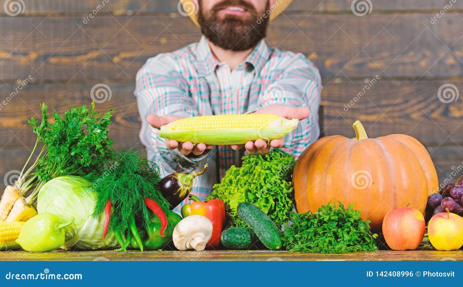 Lantligt byinvånareutseende för bonde Väx organiska skördar Bondesugrörhatt som framlägger nya grönsaker Gladlynt man