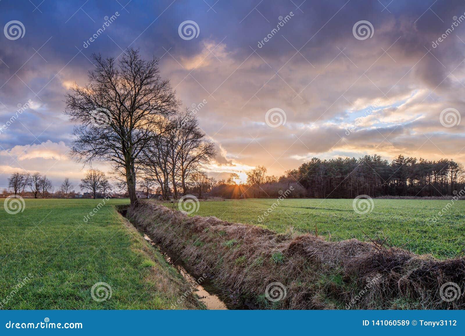 Lantligt landskap, fält med träd nära ett dike och färgrik solnedgång med dramatiska moln, Weelde, Belgien