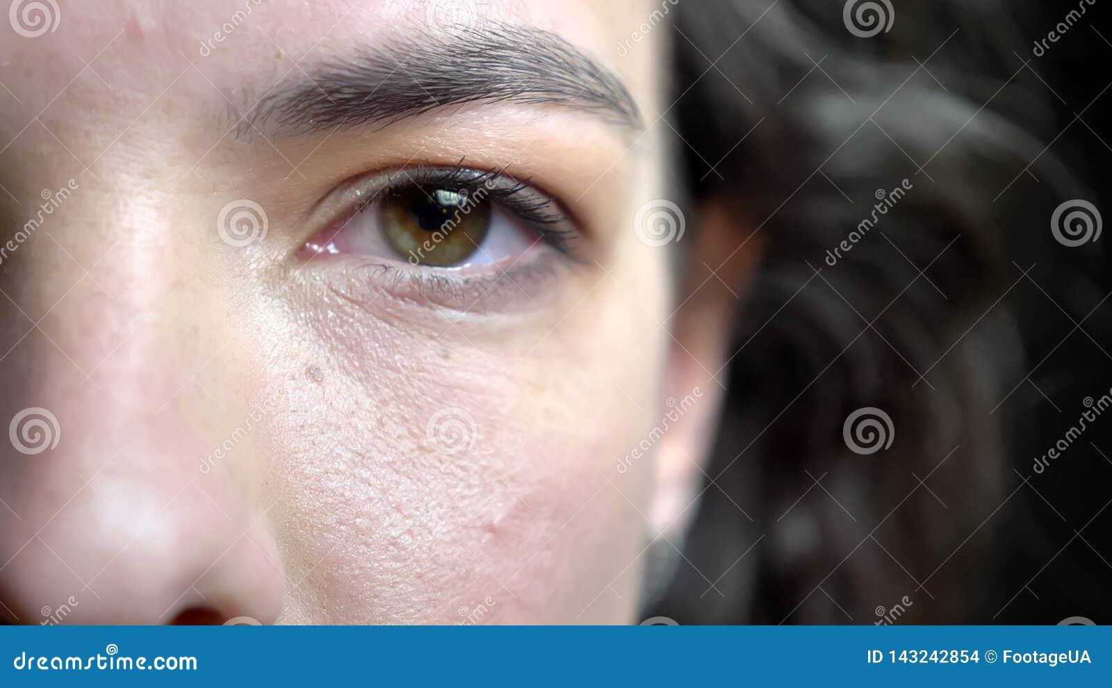 Lanzamiento de la mitad-cara del primer de la cara femenina caucásica bonita joven con el pelo rizado moreno y el ojo marrón que