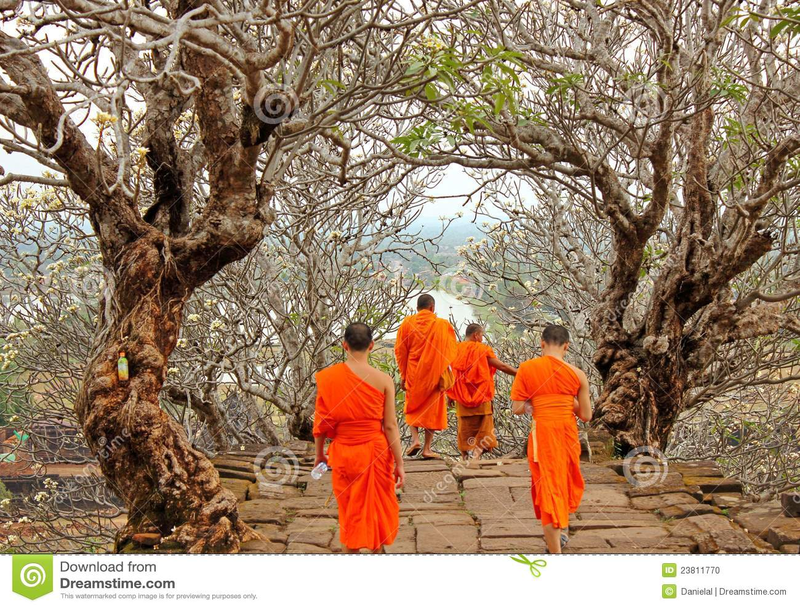 Laos michaelita phu wat