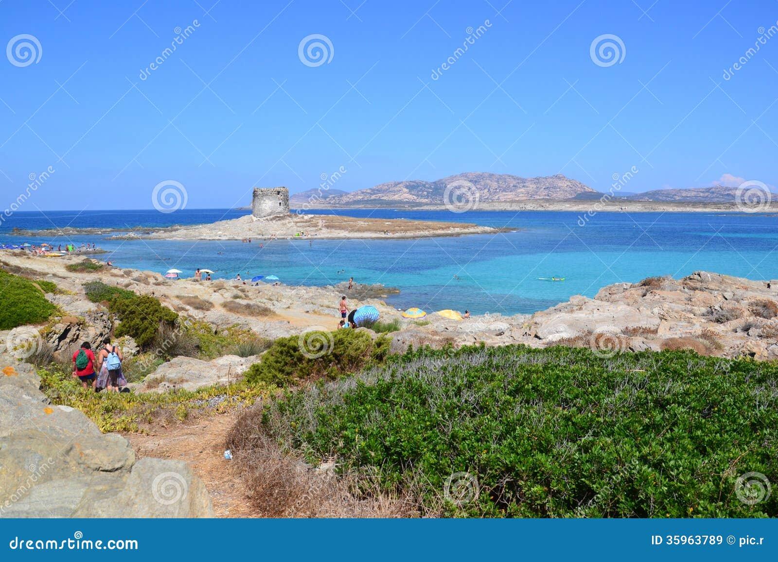 LaPelosa strand och torn i Sardinia, Italien