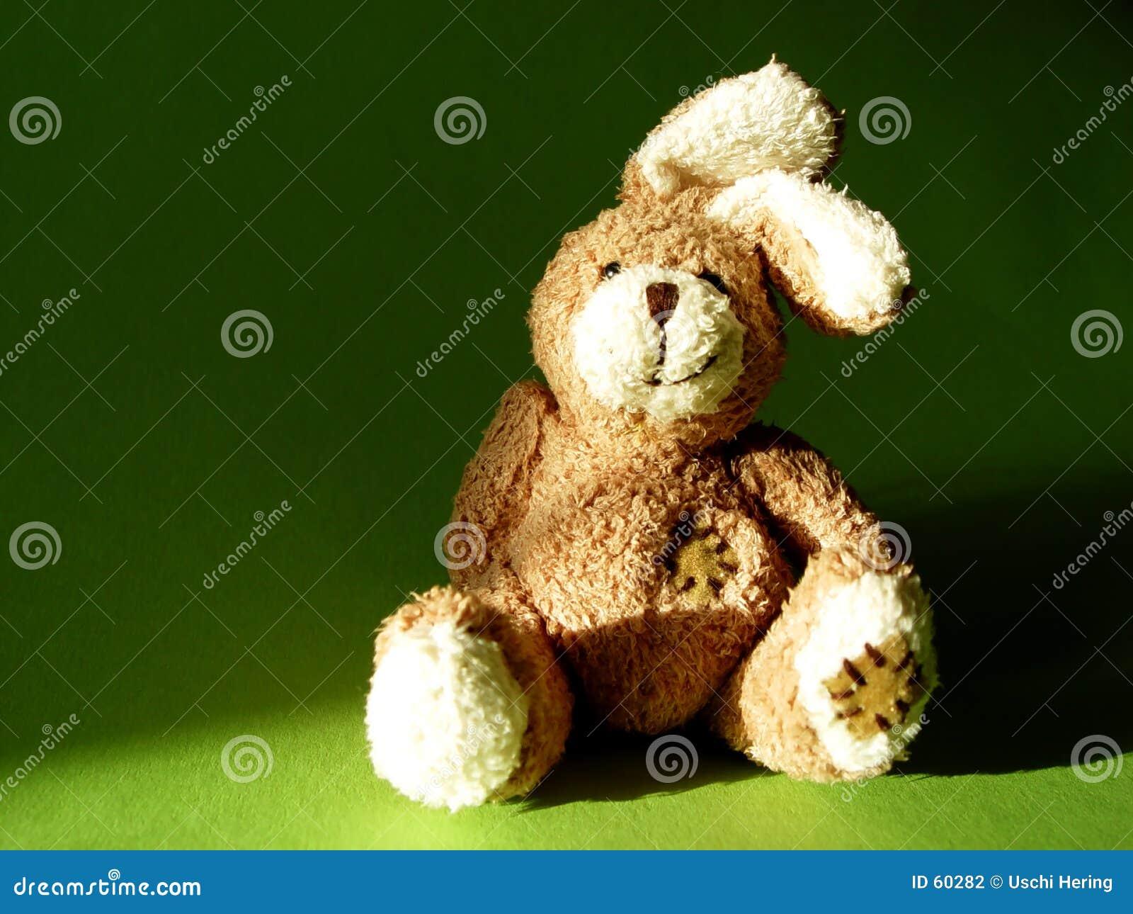Download Lapin 1 photo stock. Image du animaux, pelucheux, substance - 60282