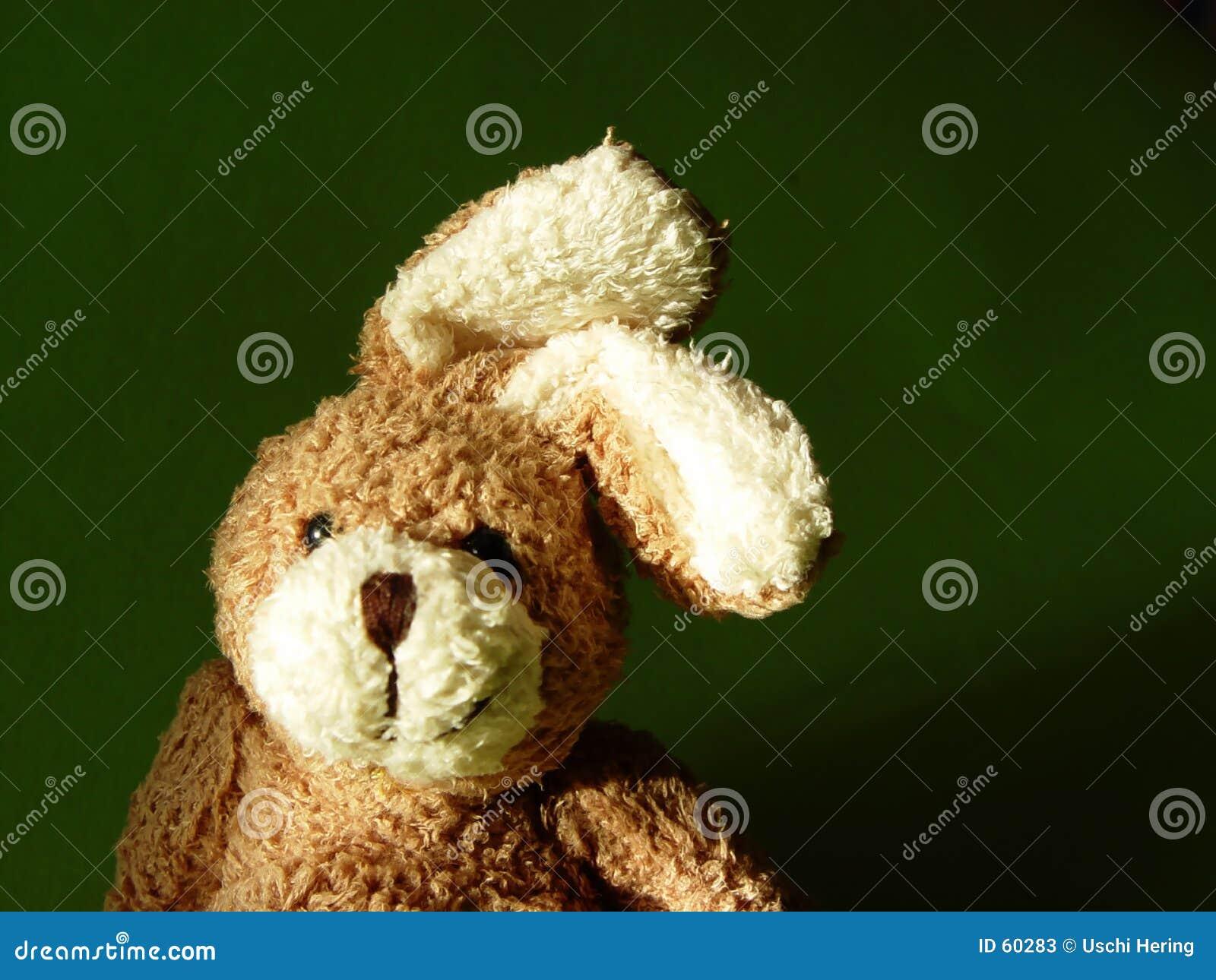 Download Lapin 2 image stock. Image du jouet, caresse, animaux, pelucheux - 60283