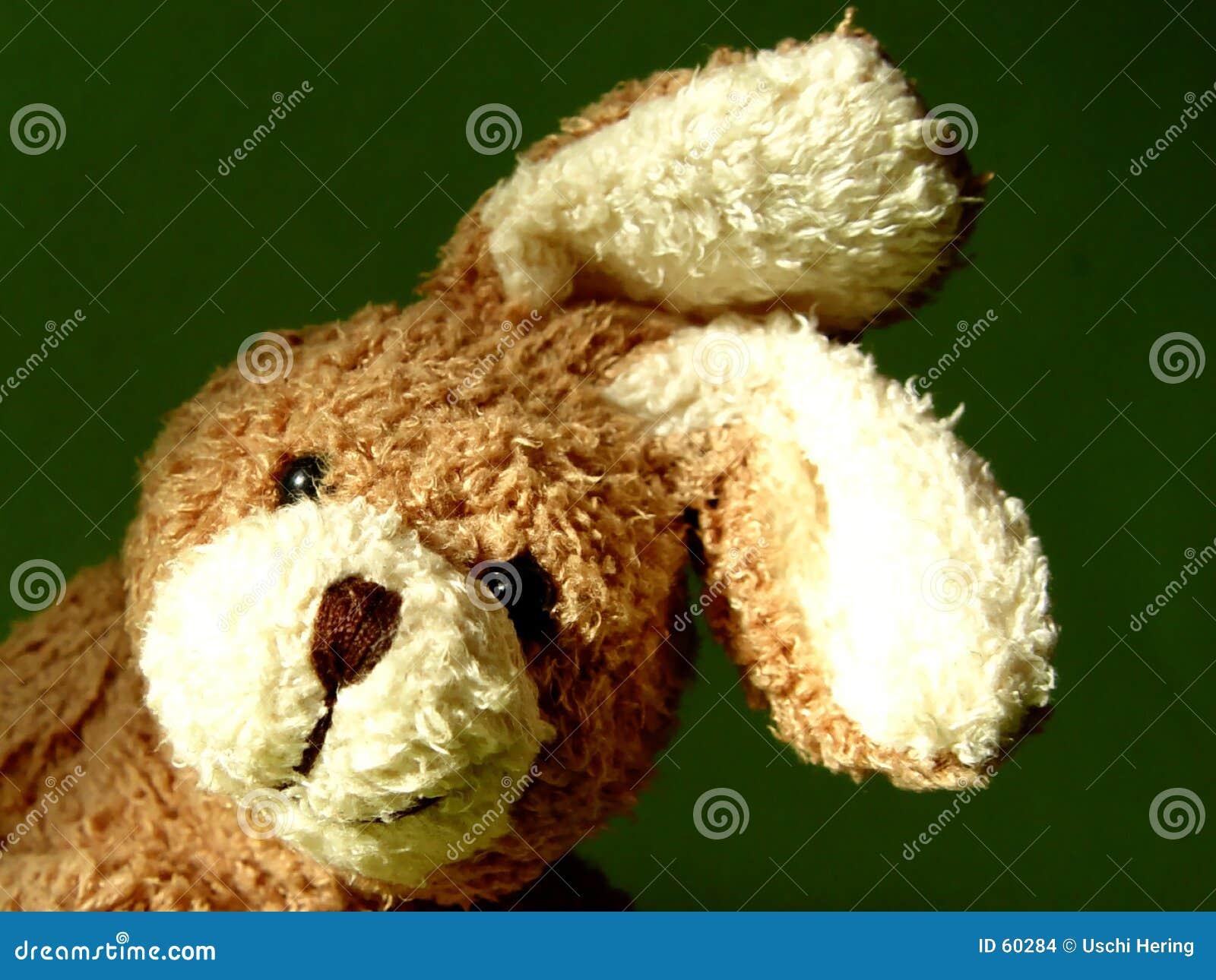Download Lapin 3 photo stock. Image du blanc, animal, duvet, caresse - 60284