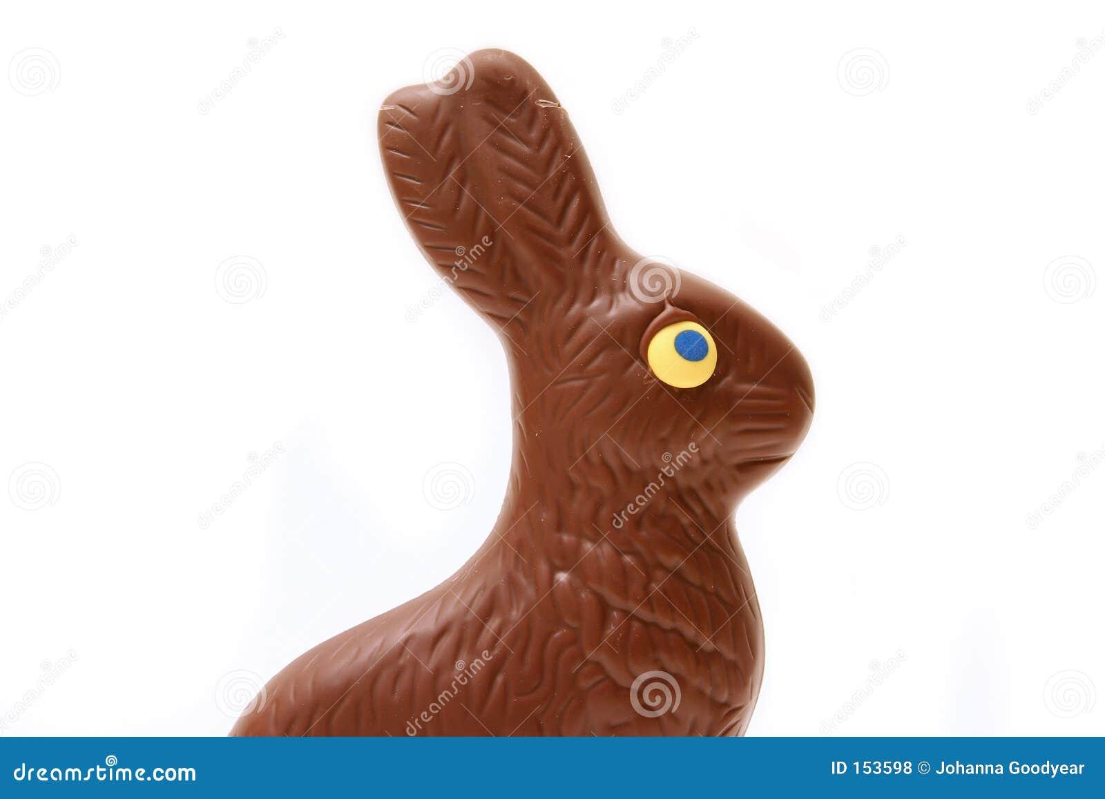 Lapin de chocolat