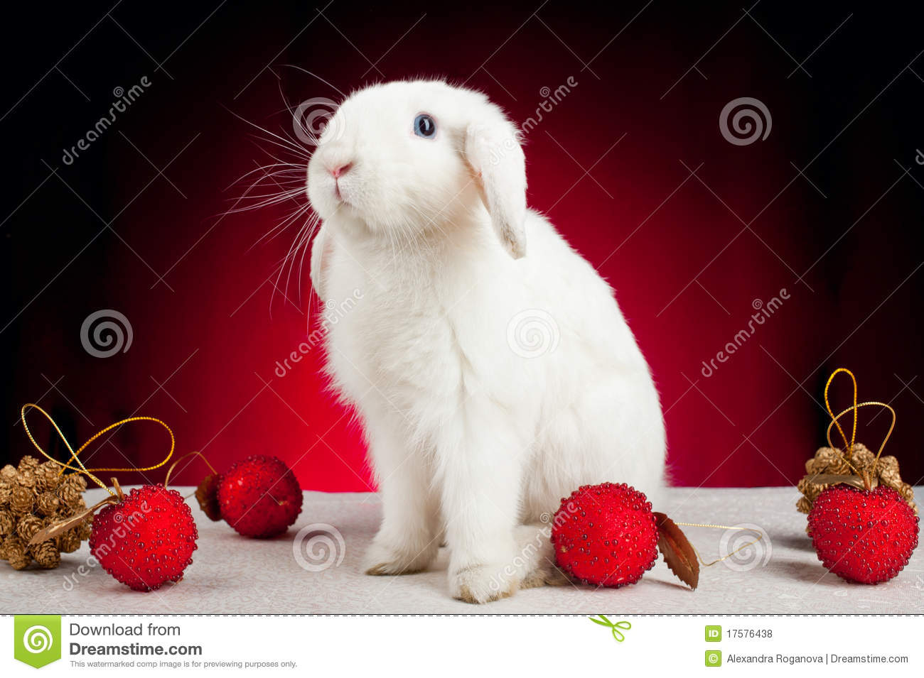lapin de no l blanc sur le fond rouge photo stock image 17576438. Black Bedroom Furniture Sets. Home Design Ideas