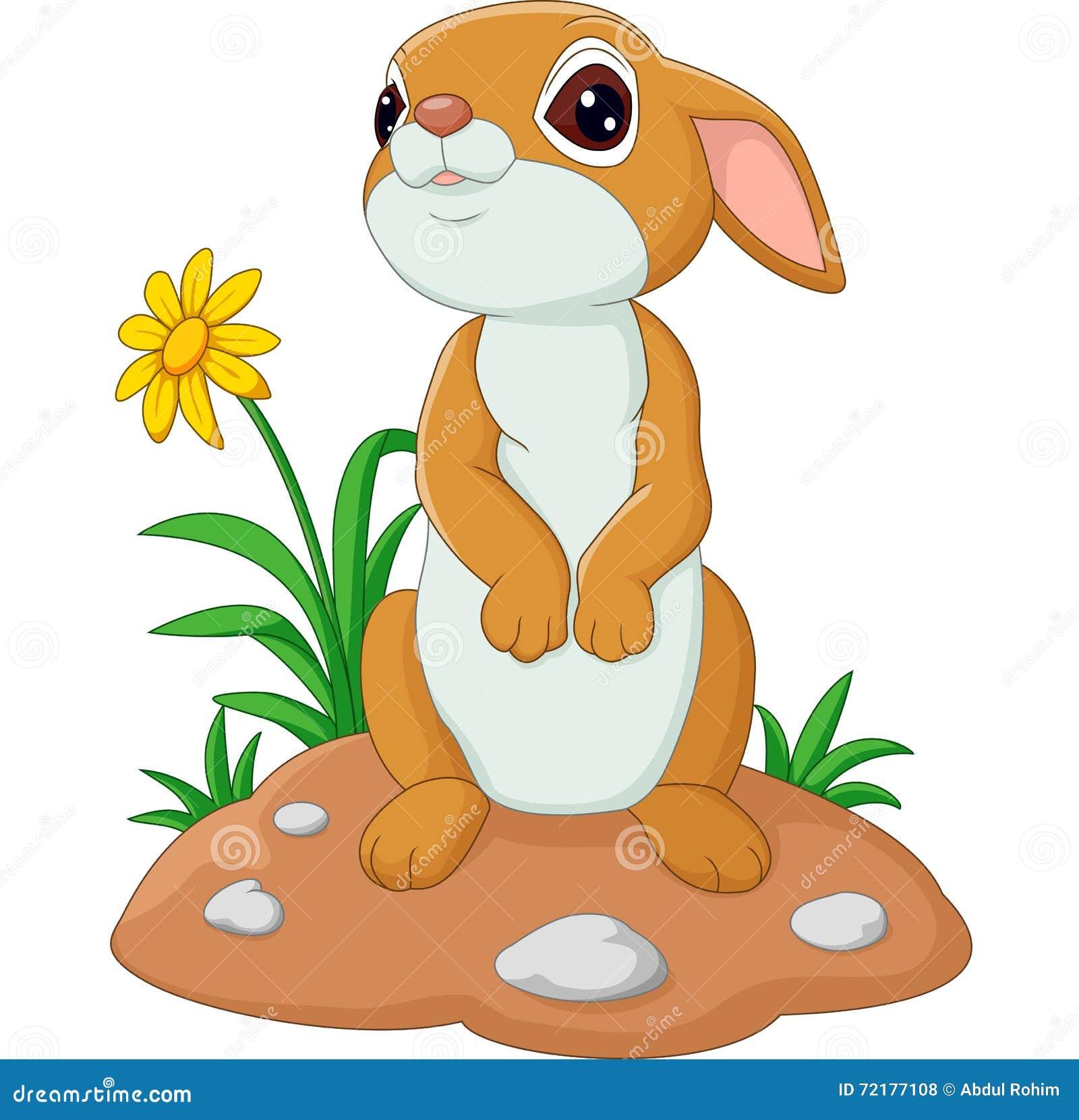 Lapin mignon de dessin anim illustration de vecteur - Dessin lapin mignon ...