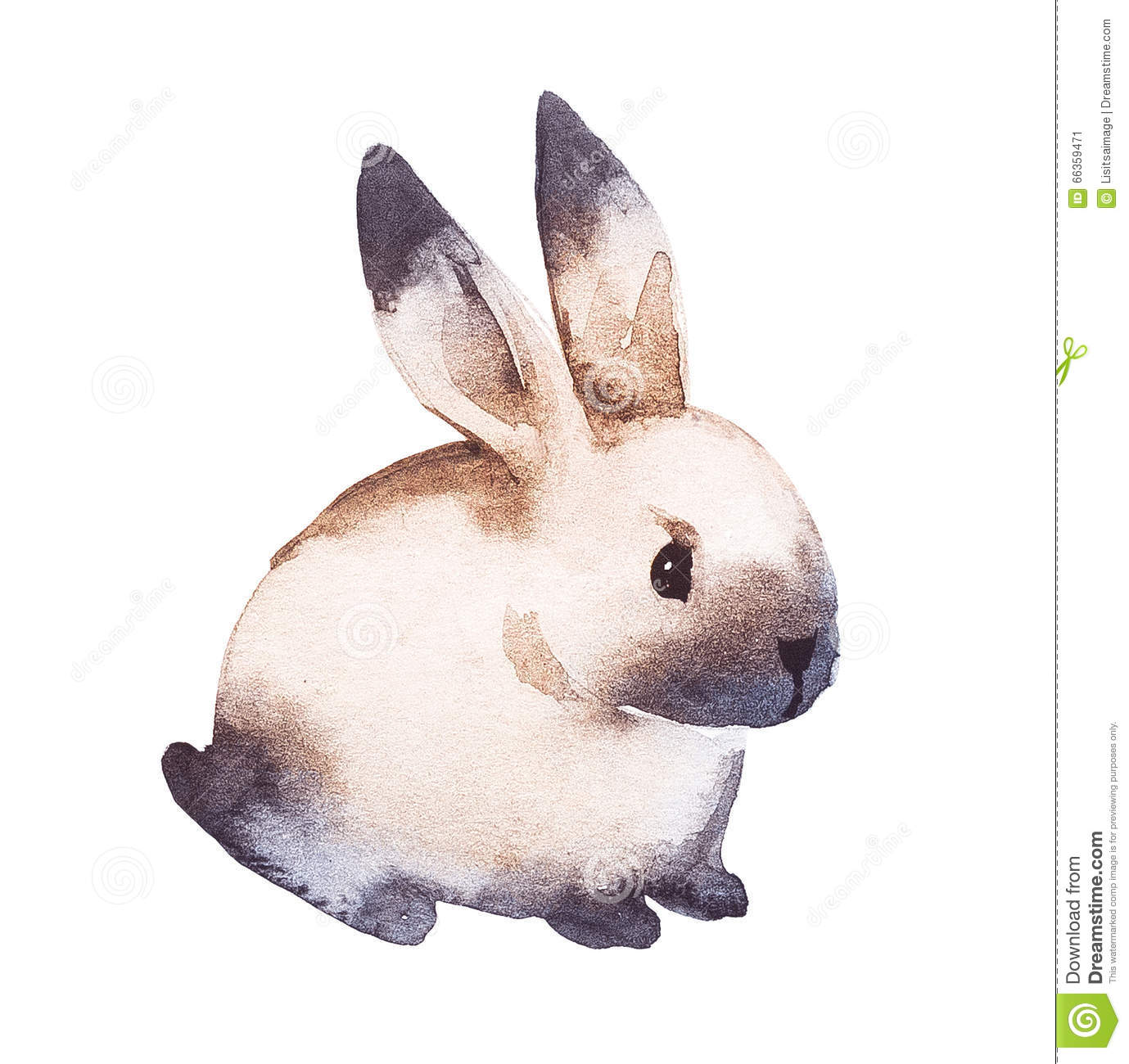 Lapin mignon illustration de dessin de main d 39 aquarelle illustration stock illustration du - Dessin lapin mignon ...