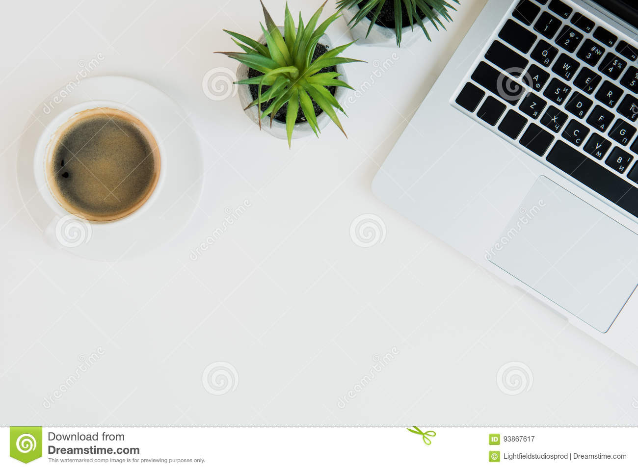 Laptop With Cup Of Coffee And Plants On Table Top Laptop