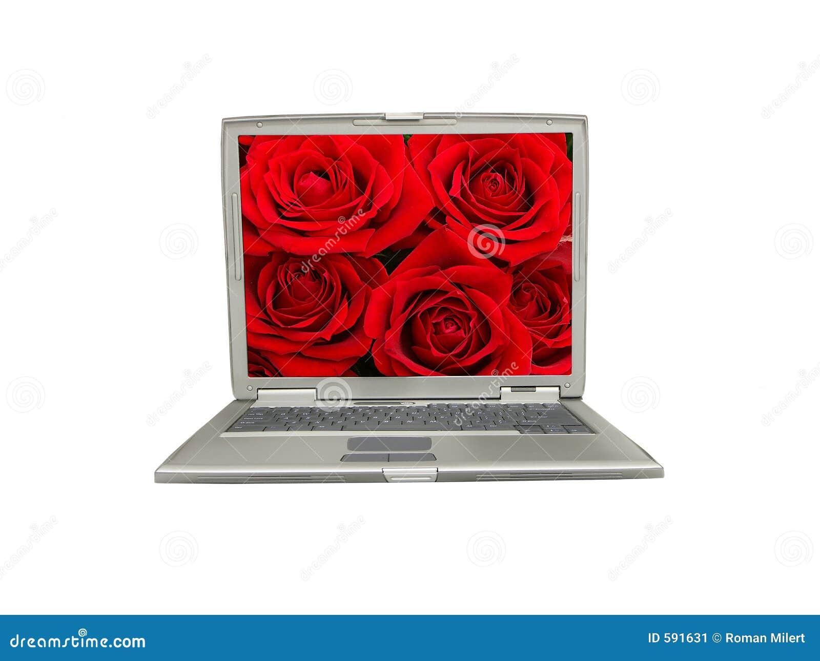 Laptop mit rosafarbenem Bildschirm des Rotes
