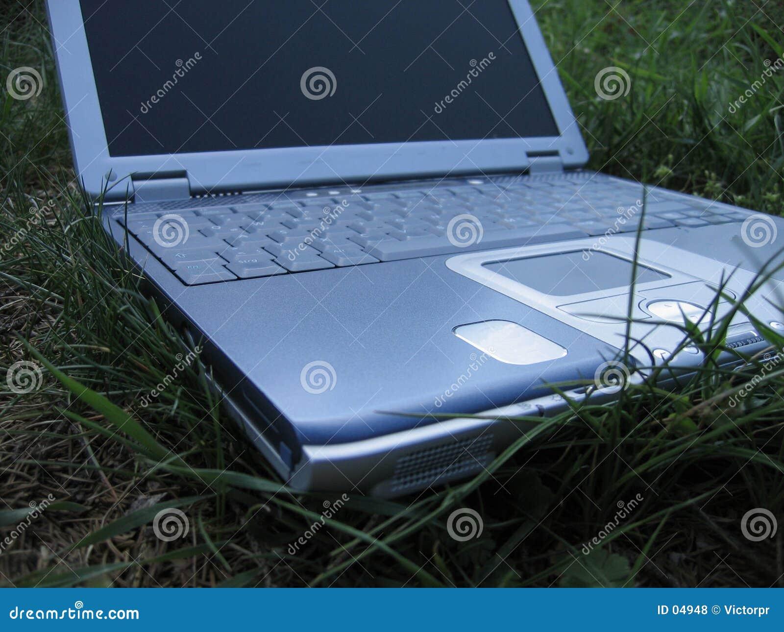 Laptop op het gras