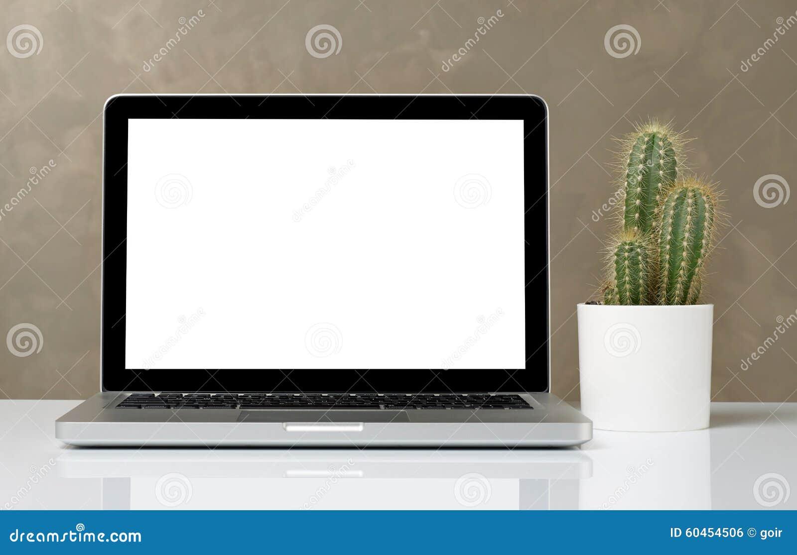 Laptop und Kaktus