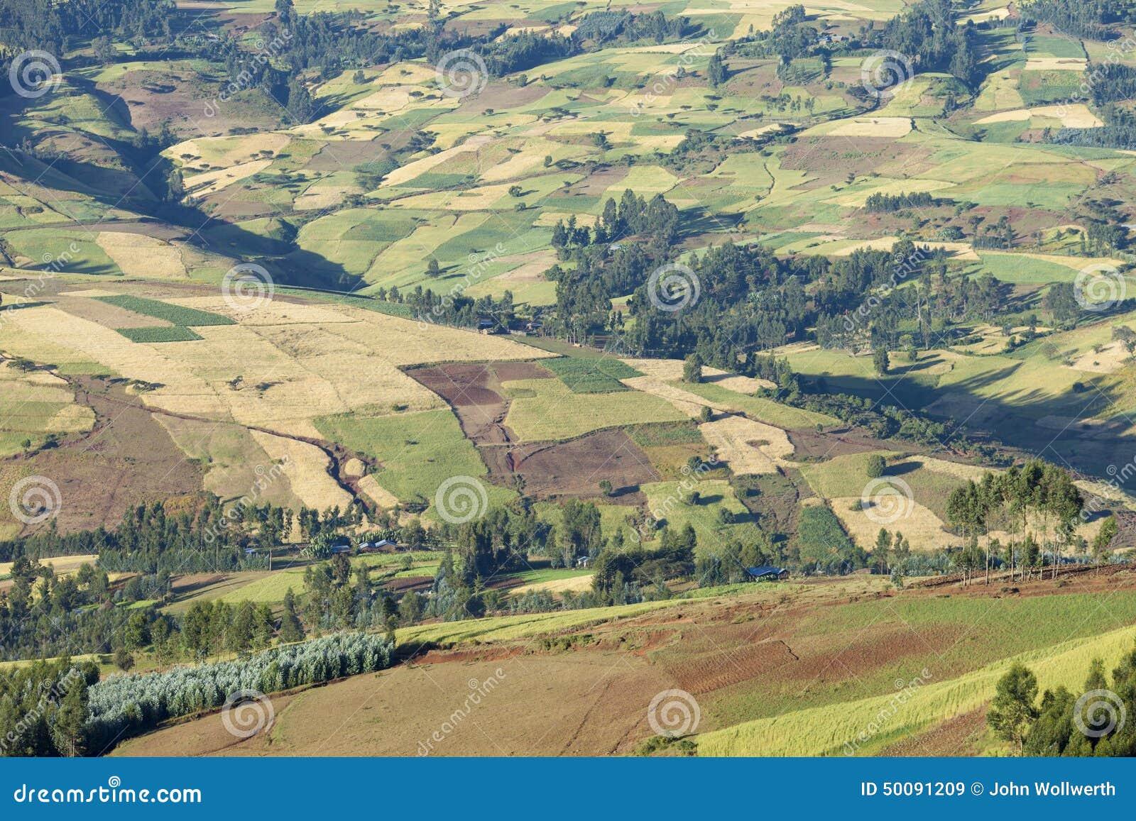 Lapwerk van landbouwbedrijven in Ethiopië