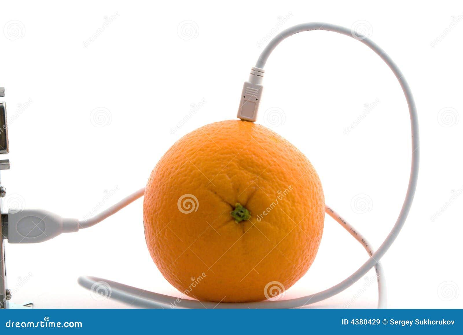 A laranja conectada através do cabo