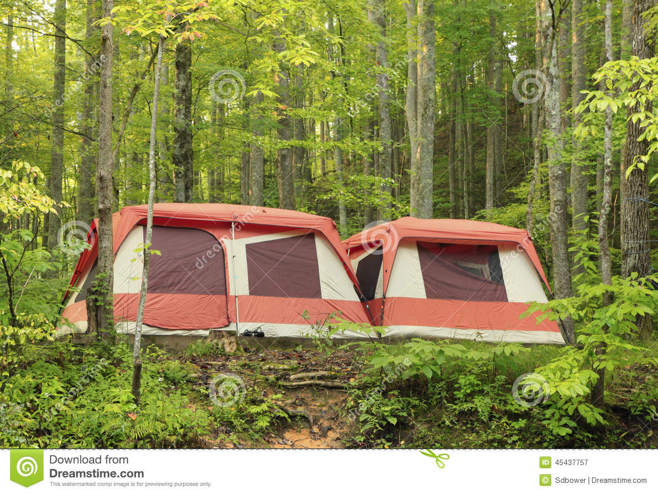 Royalty-Free Stock Photo & Large Brightly Colored Family Camping Tents In The Woods Stock ...