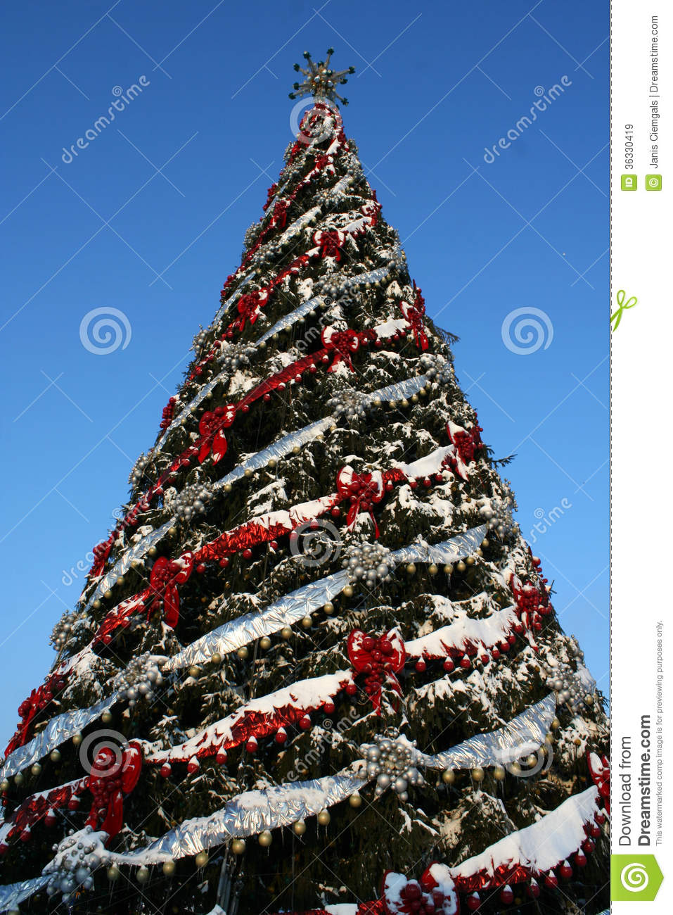 Large christmas tree royalty free stock images image Large decorated christmas trees