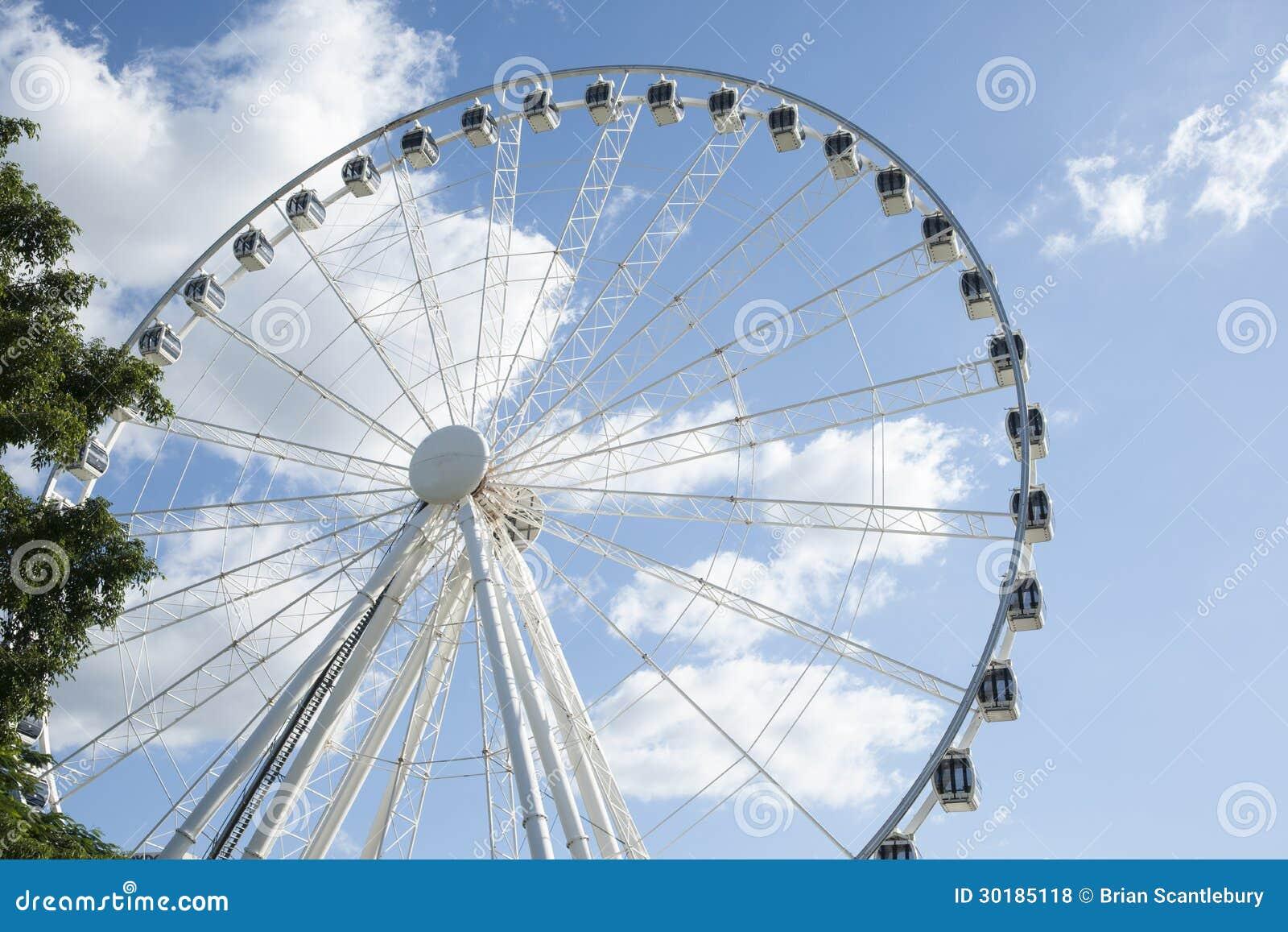 Due date wheel online in Brisbane