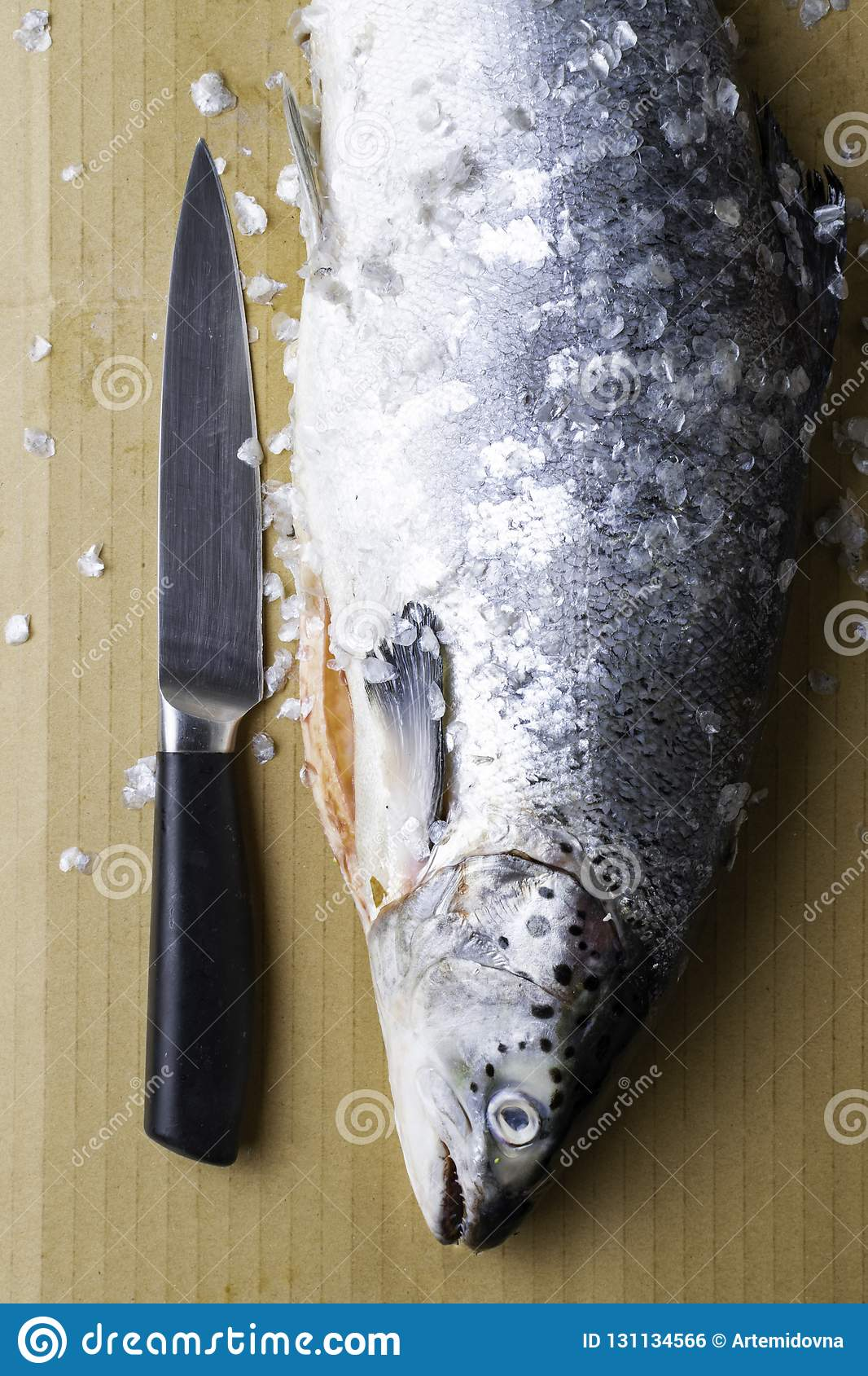 Large Fresh Salmon, Knife And Scissors  Preparation For