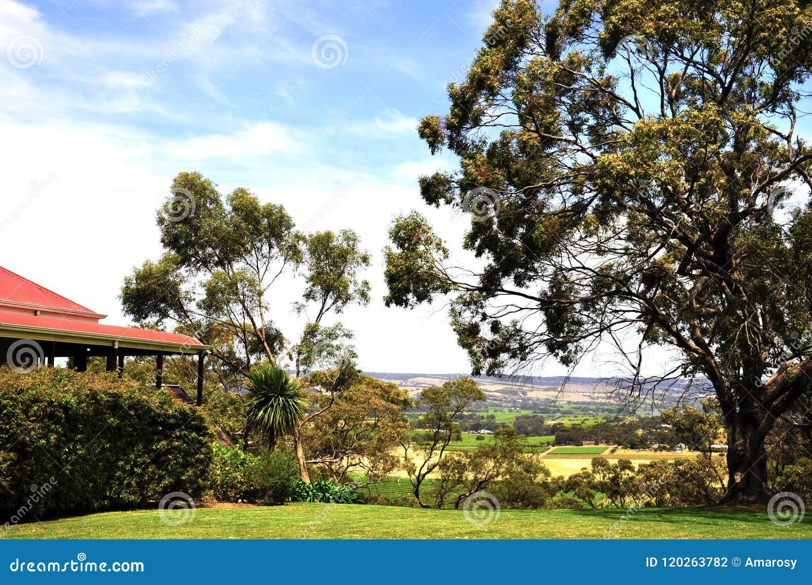 Hilltop australia