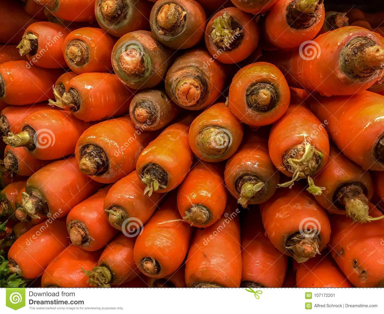 Stacked Horse Carrots stock image. Image of vegetables - 9