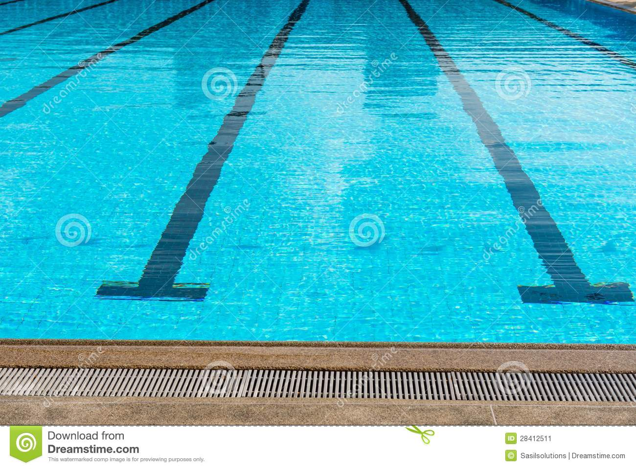 Large Olympic Size Swimming Pool With Racing Lanes Stock Image Image 28412511