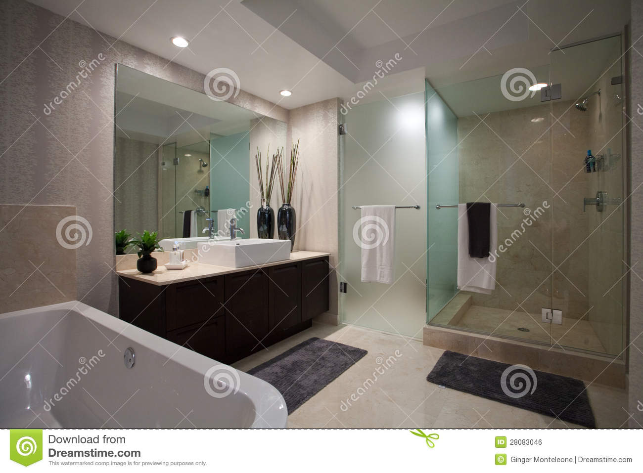 Large Open Bathroom Royalty Free Stock Image Image 28083046