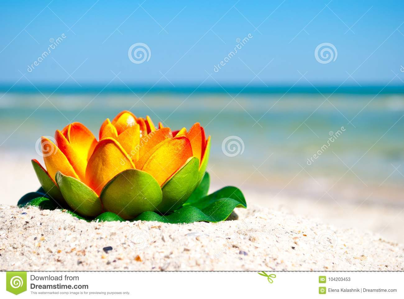 Orange lotus flower with green leaves lies on the sand on a royalty free stock photo download orange lotus flower izmirmasajfo Images