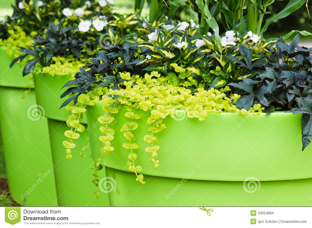 large plant pots with flowers in the garden stock images - Outdoor Flower Pots