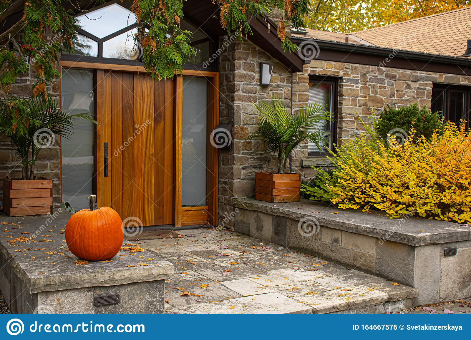 189 Fancy Front Doors Photos Free Royalty Free Stock Photos From Dreamstime