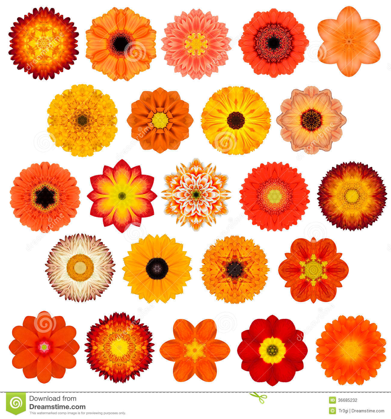 Kids Stock A Wide Selection Of Luxury Premium Cotton: Large Selection Of Various Concentric Mandala Flowers