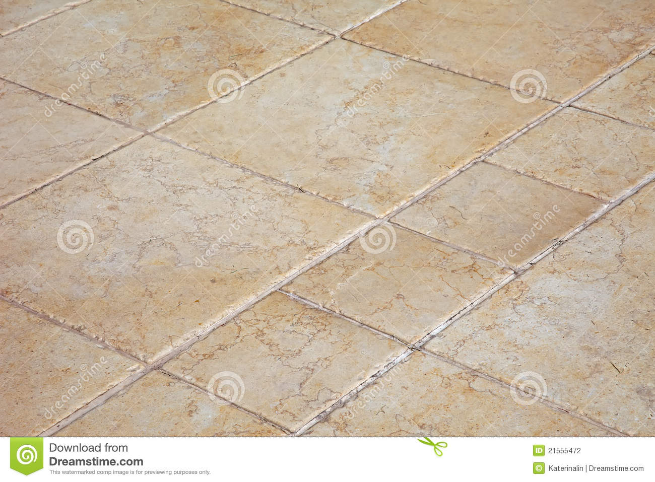 Large Stone Tiles On The Floor Stock Photography Image 21555472
