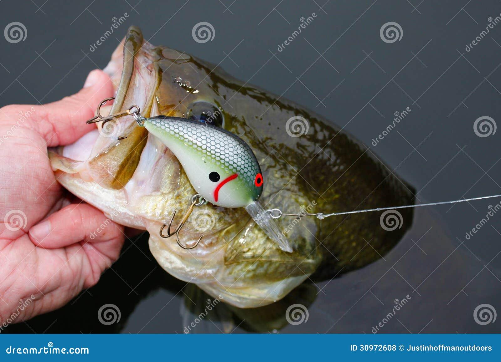 Largemouth Bass Fishing Crankbait Lure