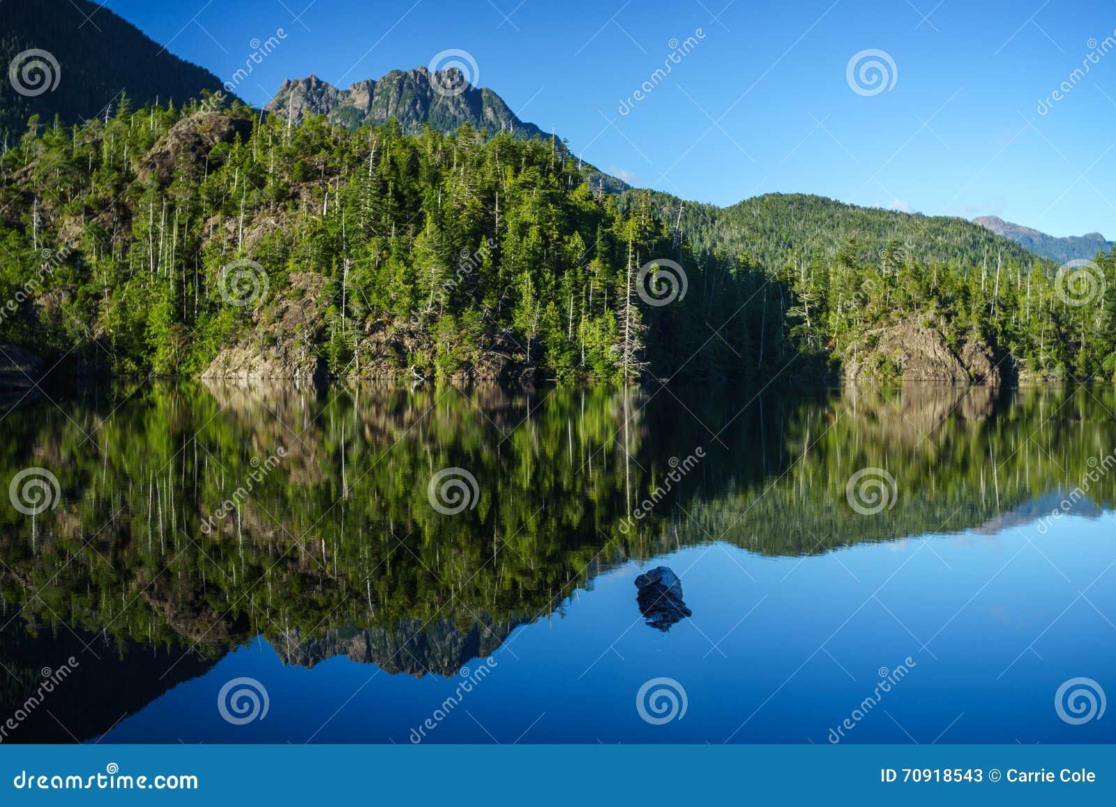 Larry Lake