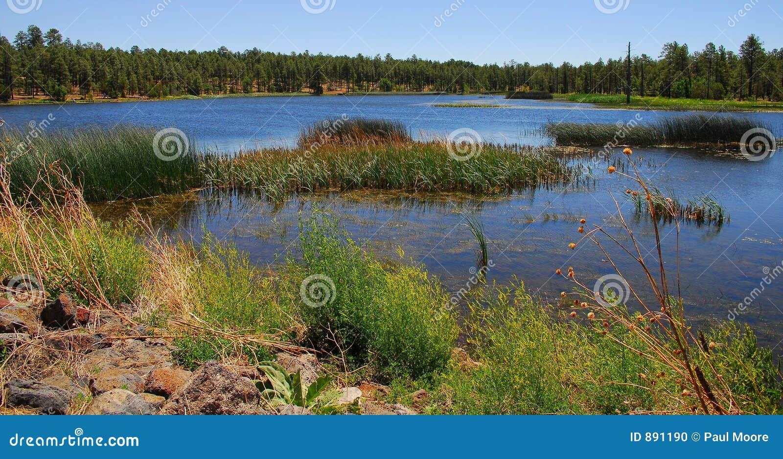 Las 7 lake