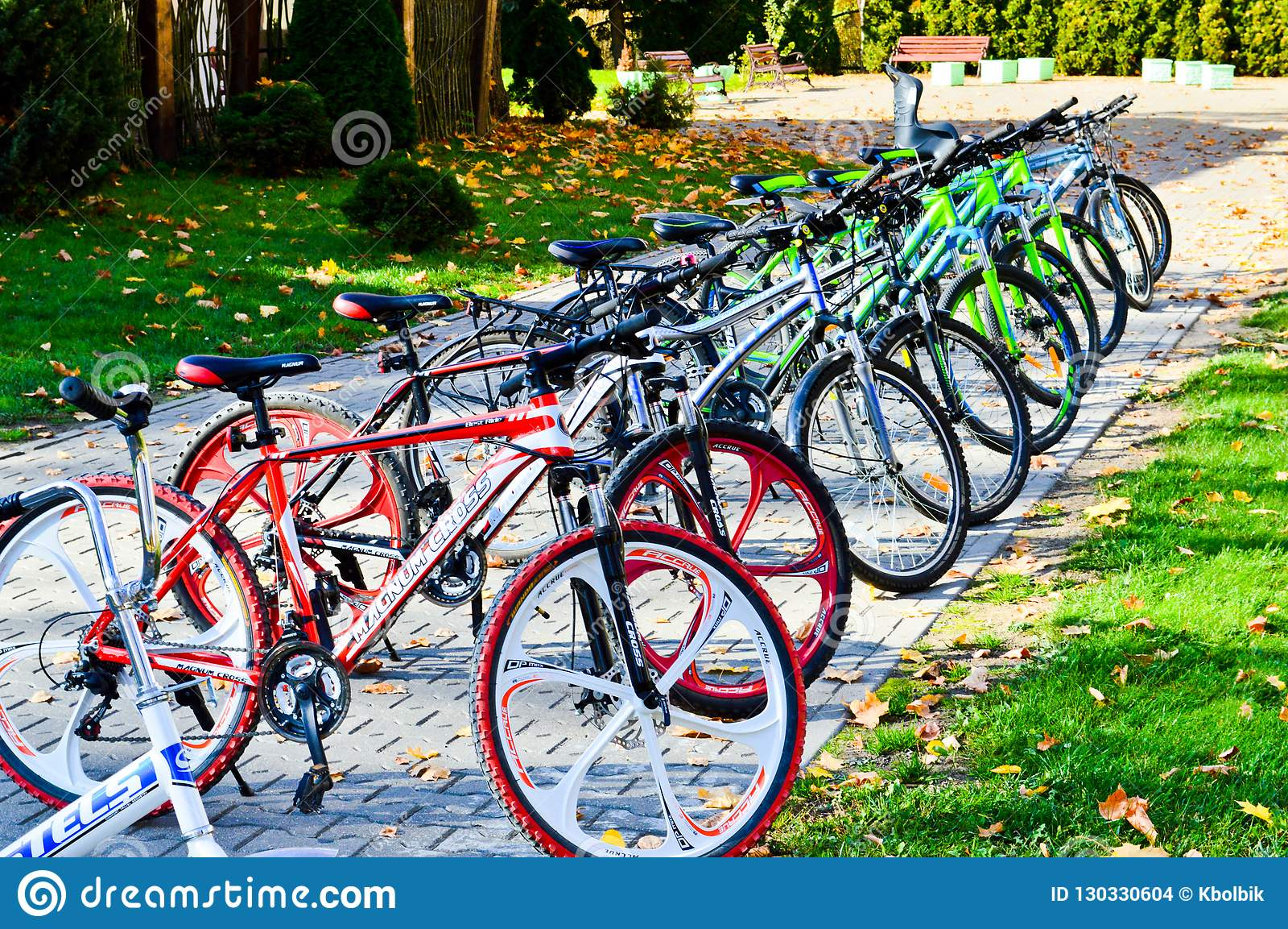 Las bicicletas multicoloras de la montaña deportiva hermosa para la reconstrucción y el deporte se parquean en fila Bielorrusia,