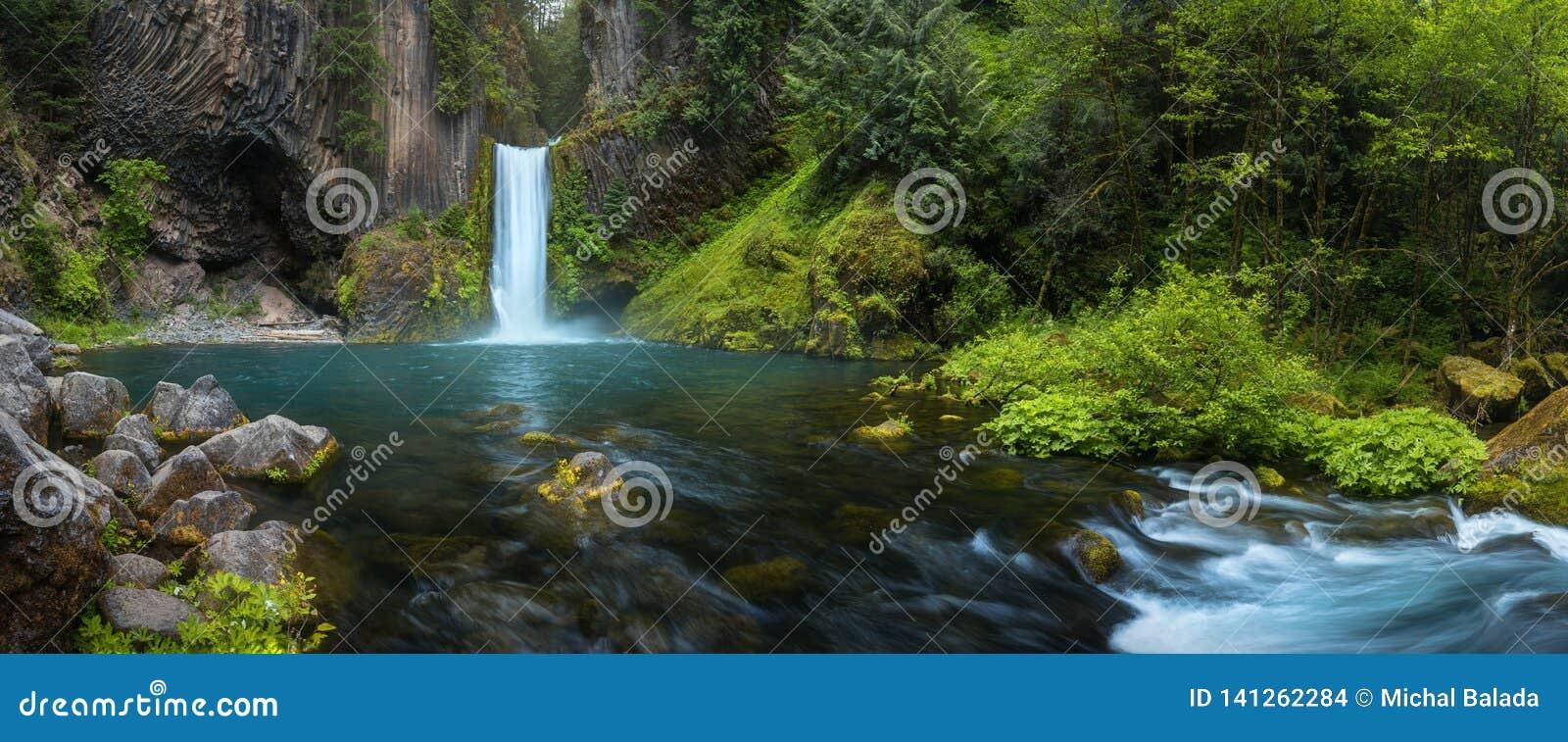 Las caídas de Toketee son una cascada en Douglas County, Oregon, Estados Unidos, en el río del norte de Umpqua