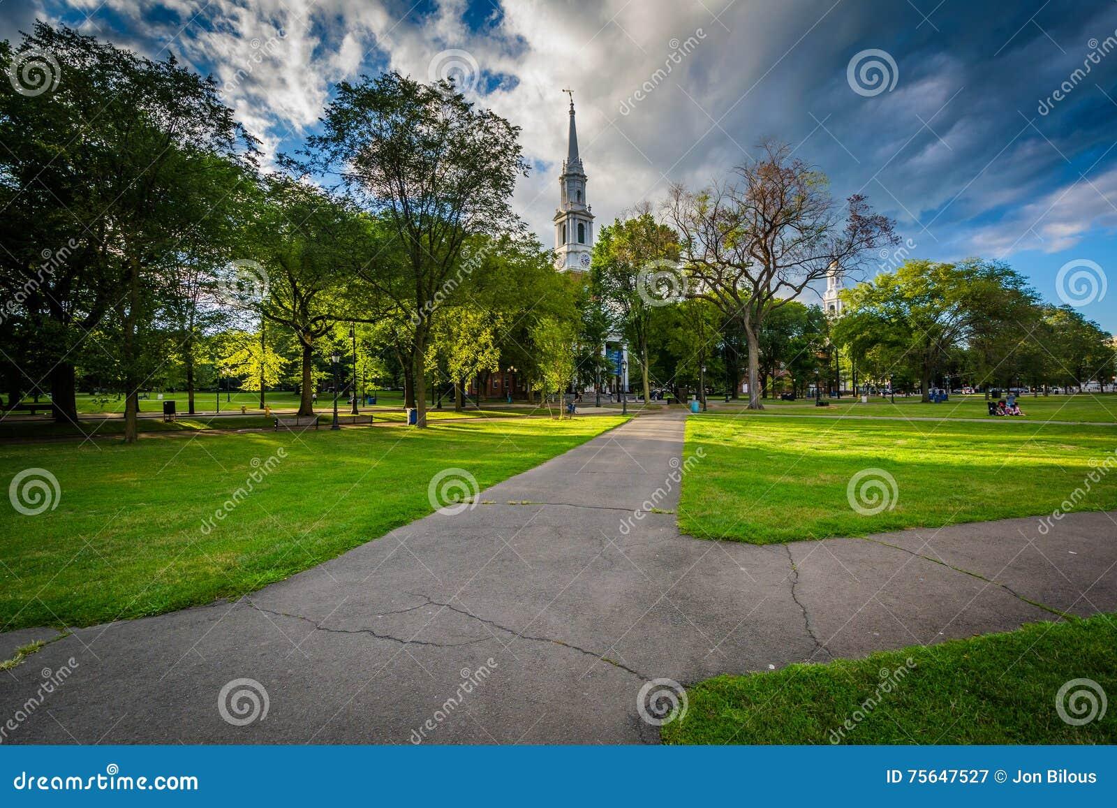 Las calzadas en New Haven se ponen verde en New Haven céntrica, Connectic