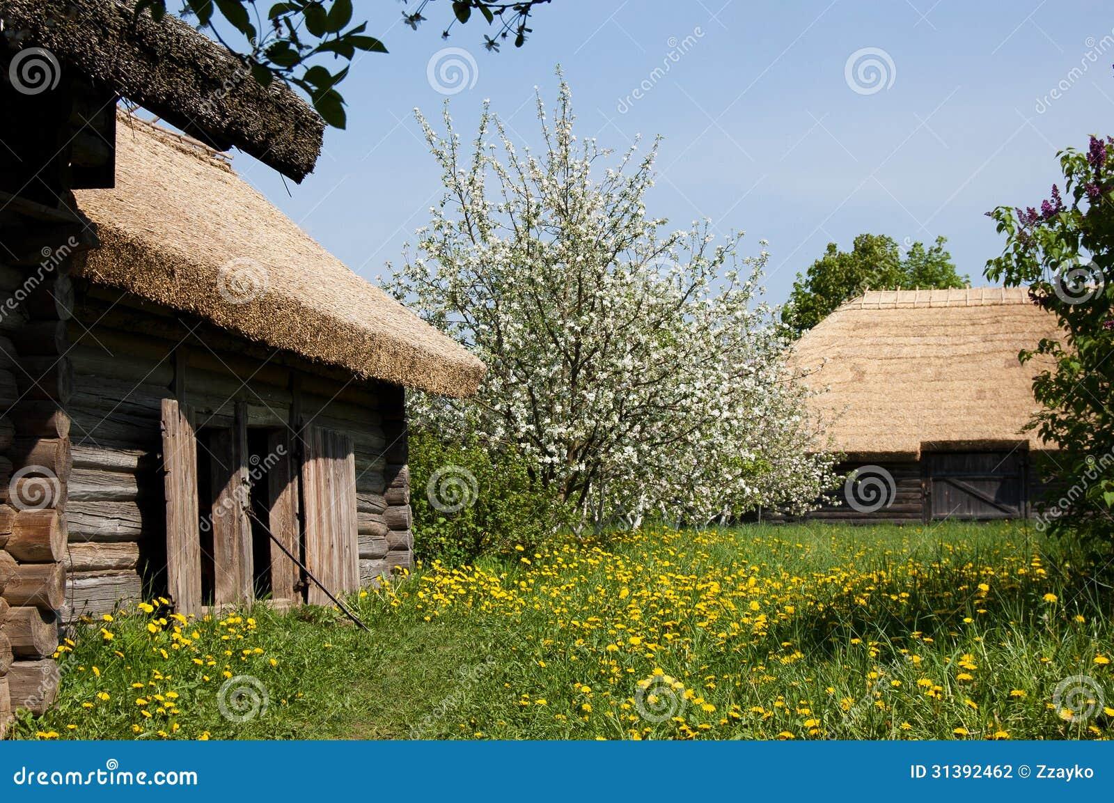 Las casas viejas del pueblo y los árboles florecientes