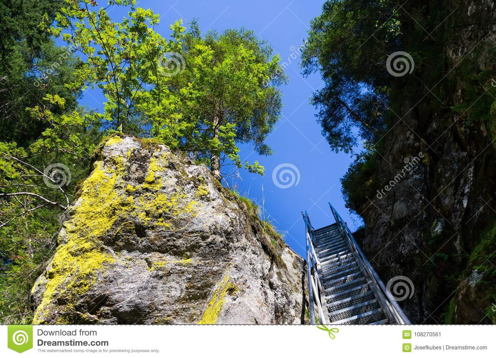 Las escaleras de la escalera en rastro alpino con infierno gorge, Schladming, Austria