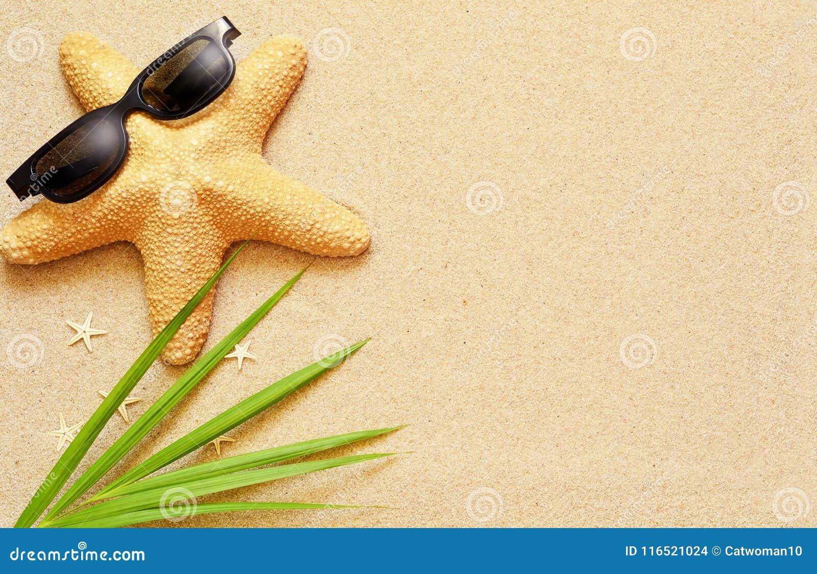 Las estrellas de mar divertidas en el verano varan con la arena