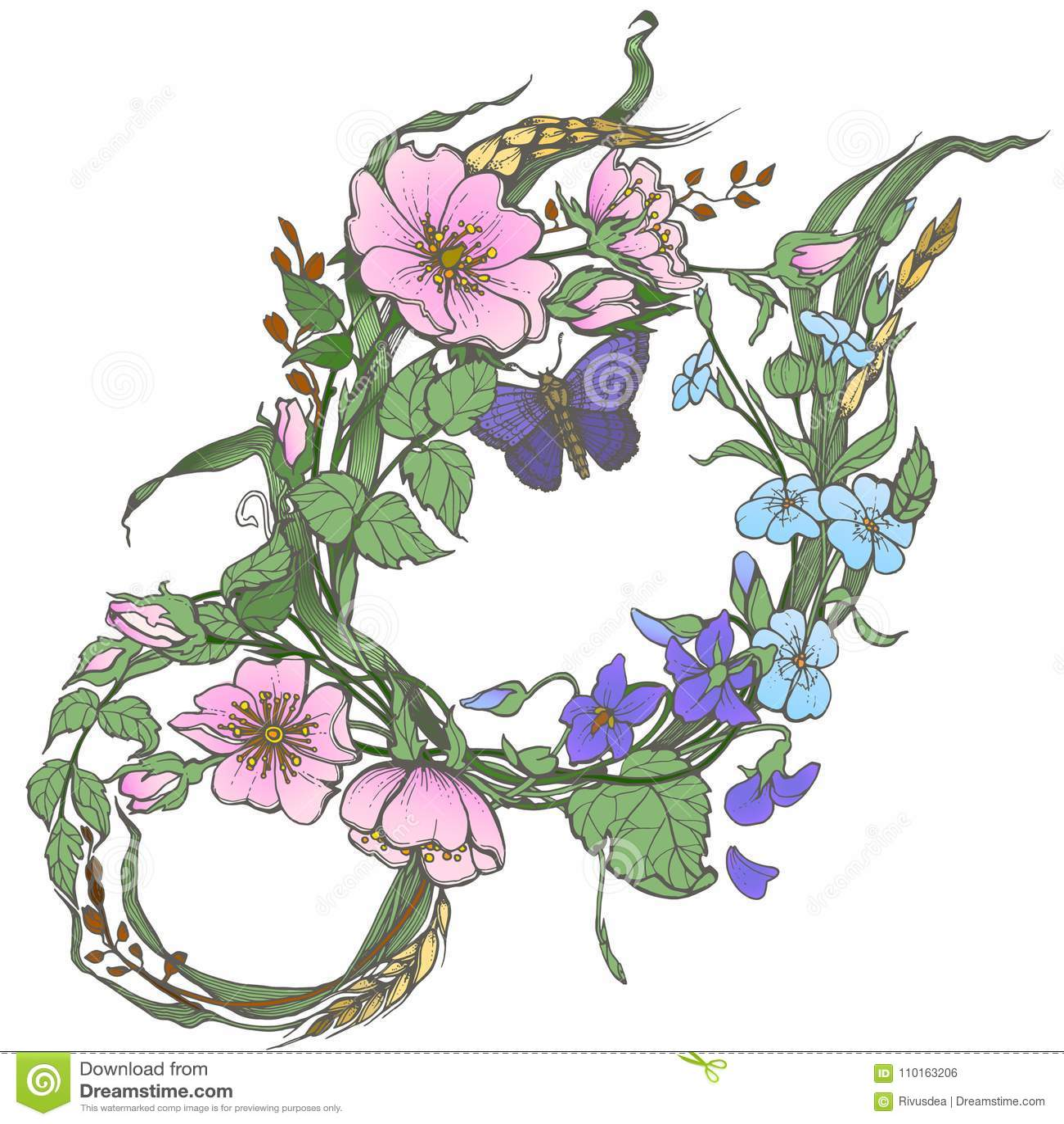 Las Flores Color De Rosa Del Perro Salvaje Con El Dibujo De La