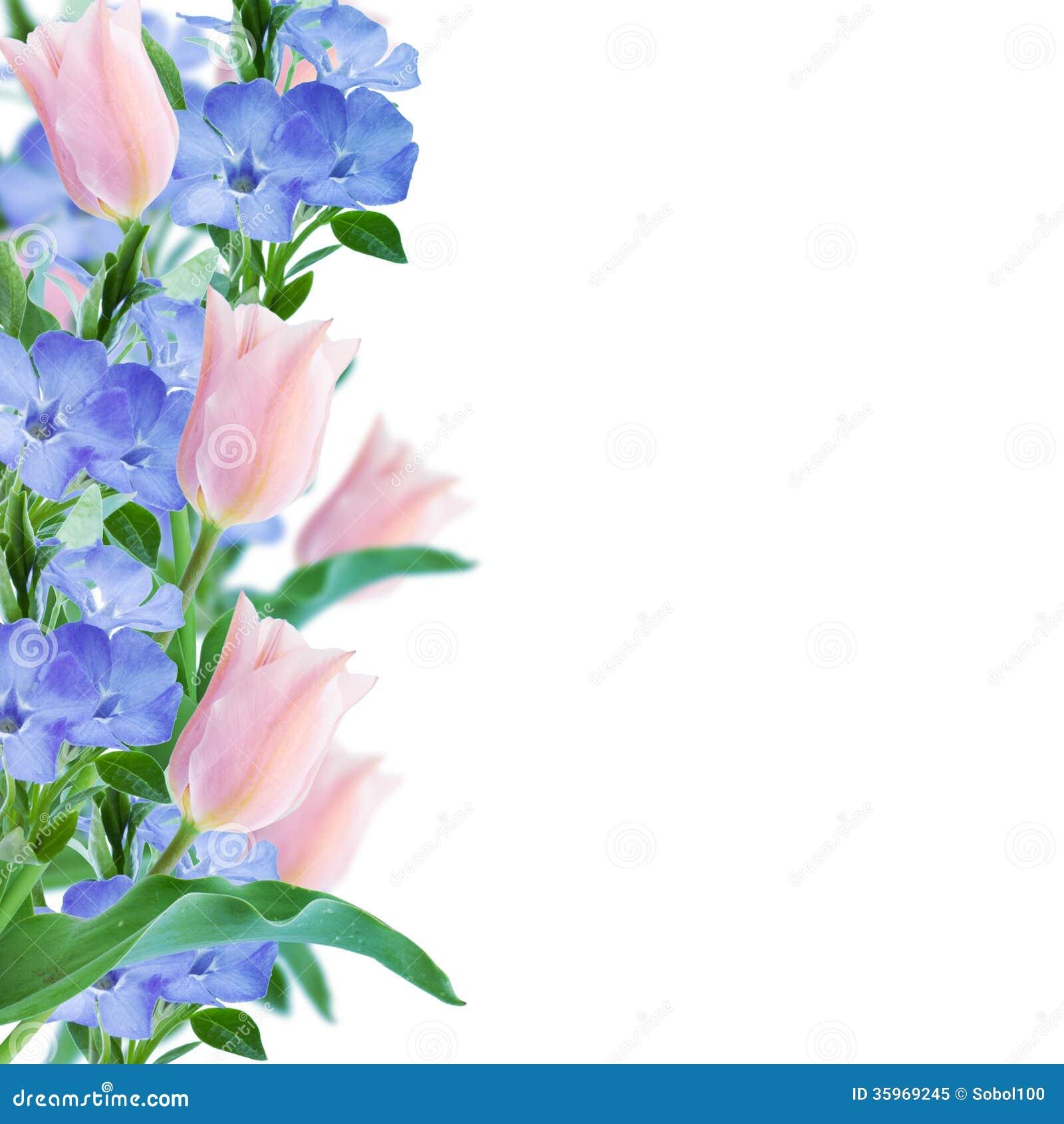 Las flores confinan con fondo rosado