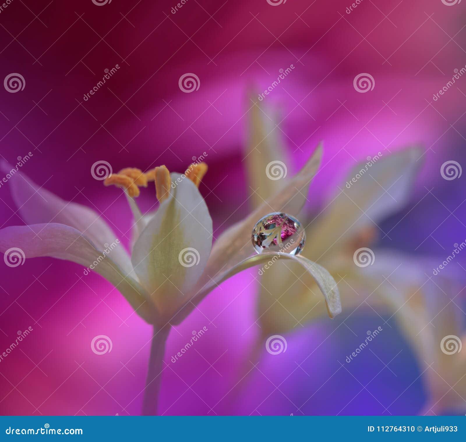 Las Flores Hermosas Reflejaron En El Agua Concepto Artístico