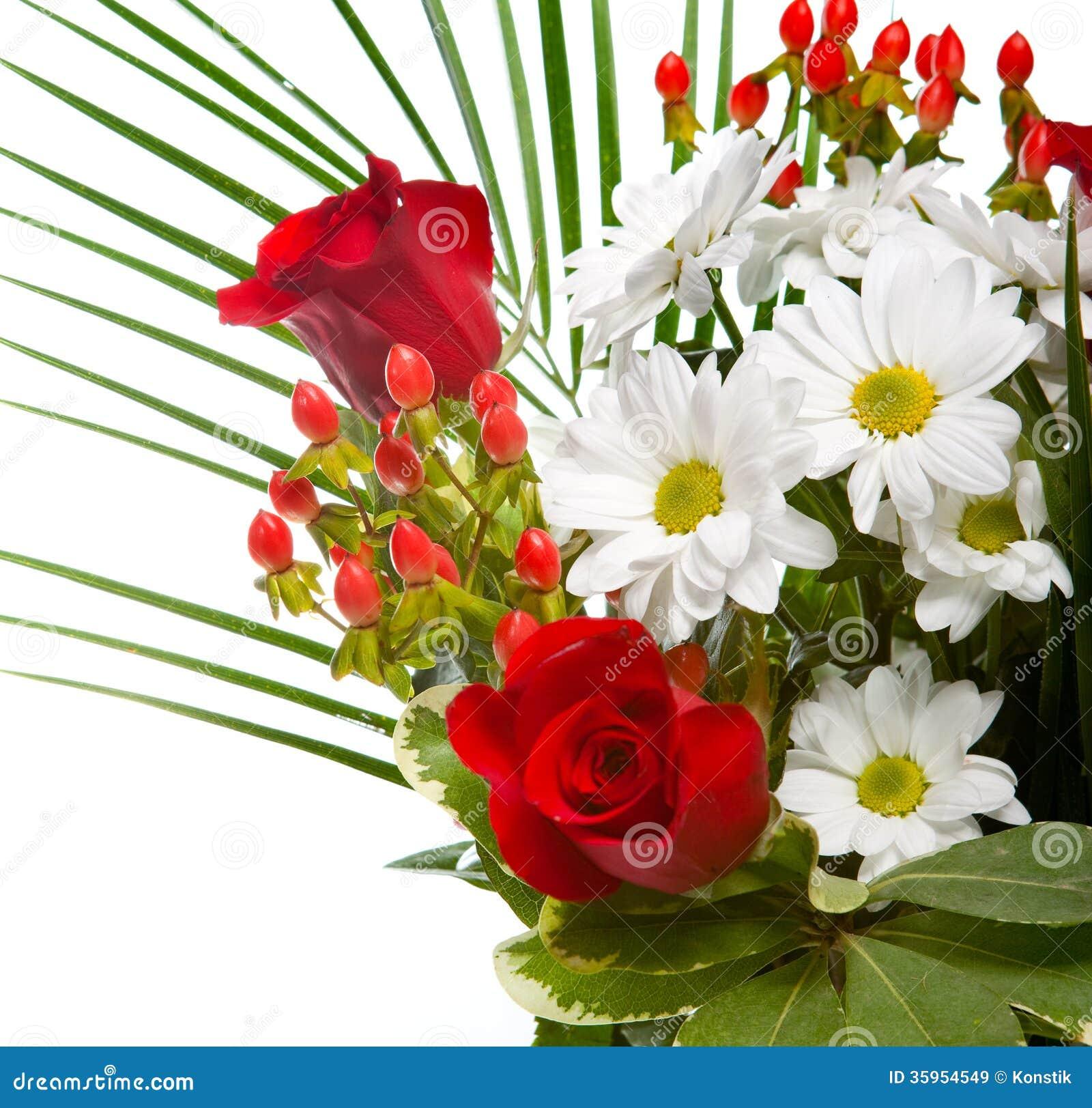 Las flores rojas y blancas brillantes y hermosas se recogen en un ramo elegante, un cierre para arriba en un fondo blanco