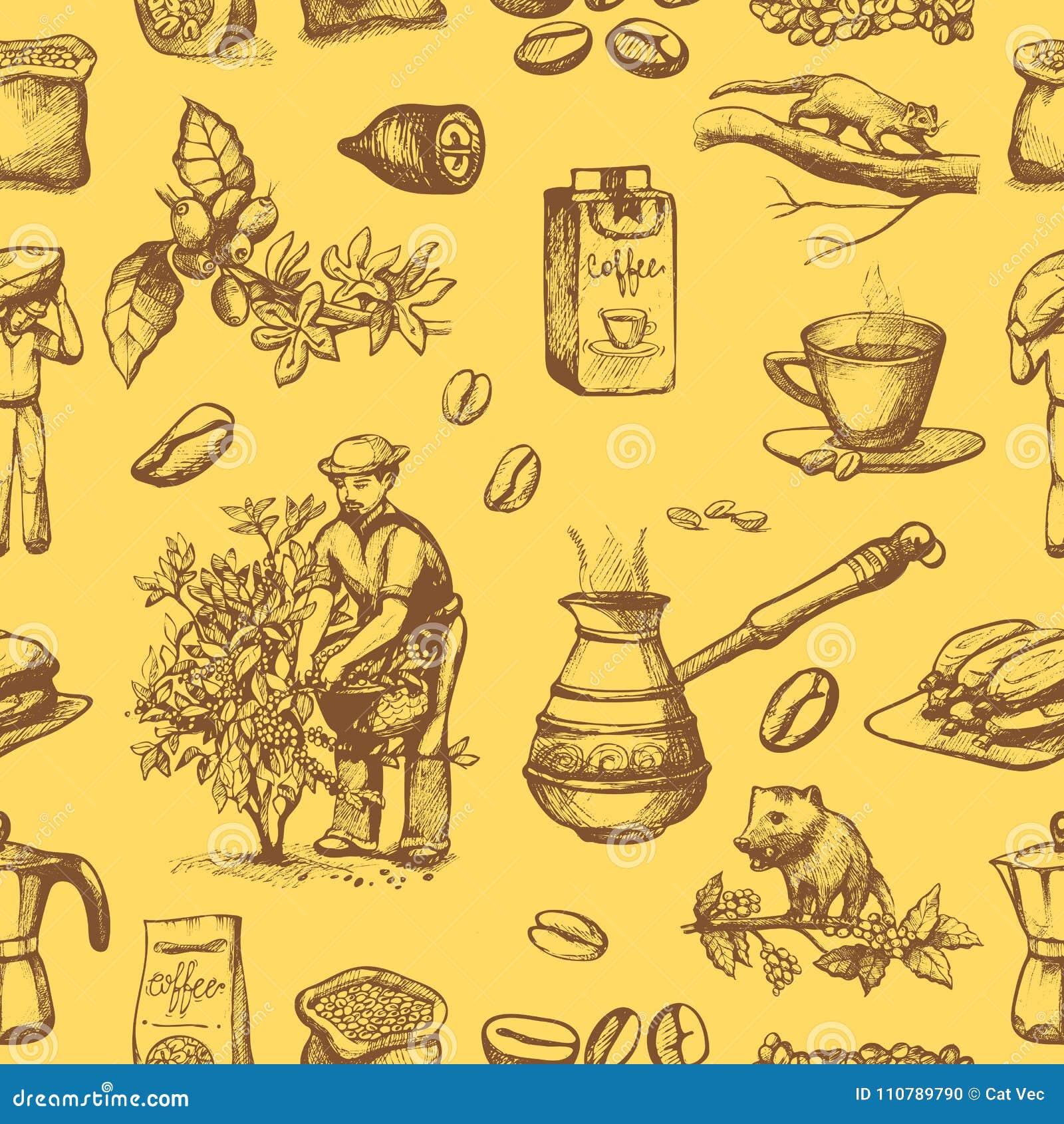 Las habas del coffeine de la cosecha del granjero de la plantación del vector de la producción del café en el dibujo del árbol y