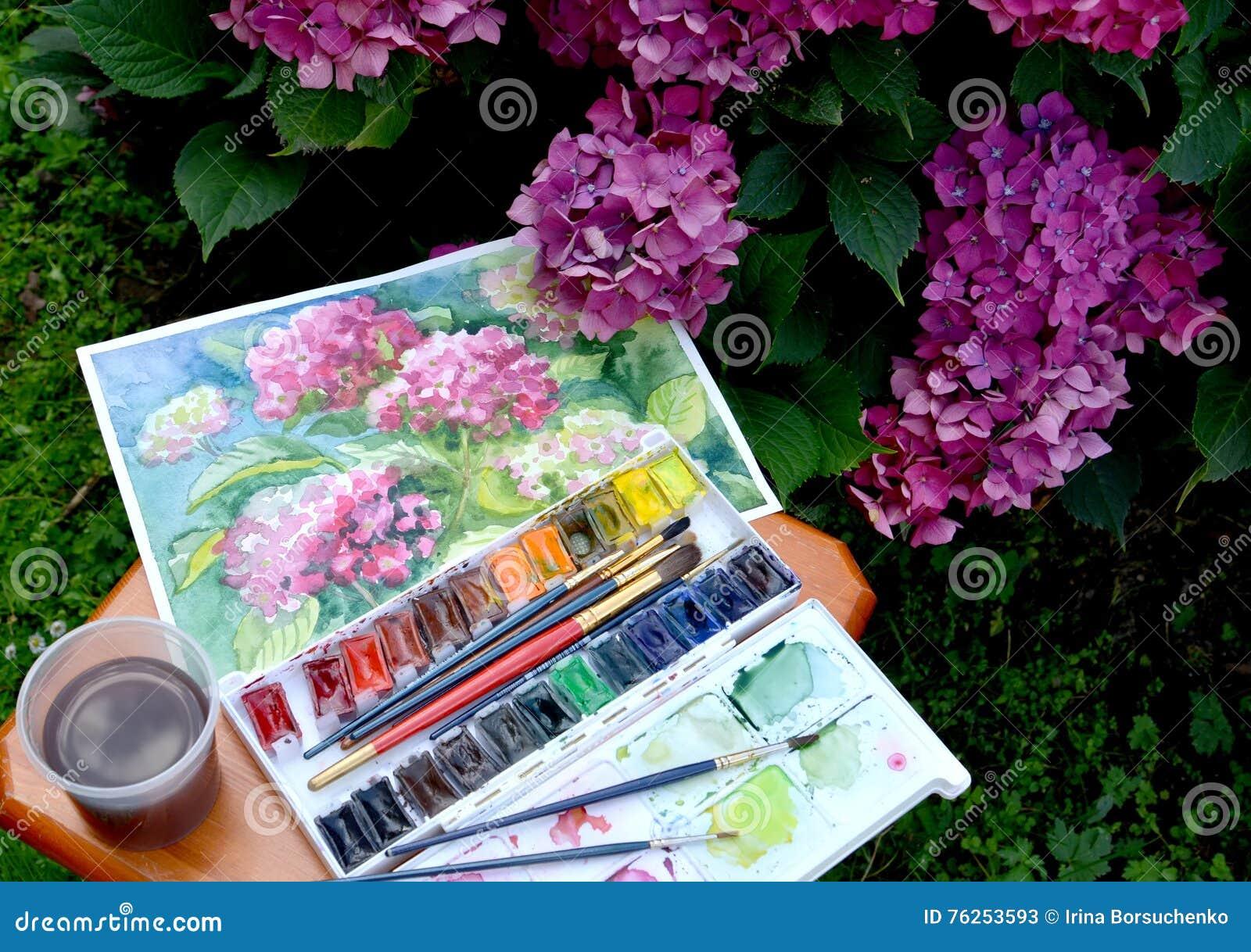 Las Hortensias Del Dibujo Las Pinturas Del Color De Agua Y Las - Color-de-las-hortensias